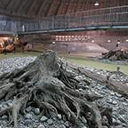 埋没林博物館
